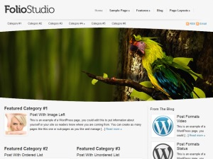 Foliostudio Child Theme premium WordPress theme