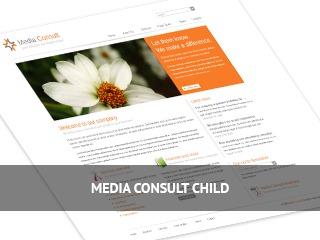 Media Consult Child WordPress theme