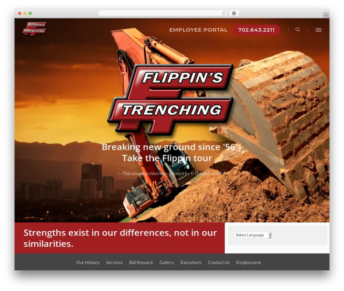Salient best WordPress template - flippins.com