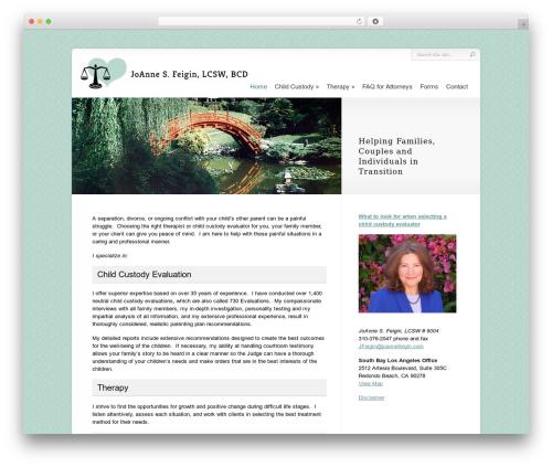 Best WordPress template Chameleon - joannefeigin.com