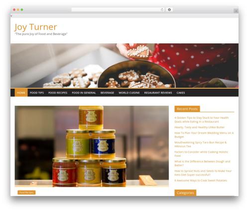 ColorMag WordPress template free download - joyturner.net