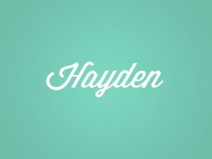 Hayden WP theme
