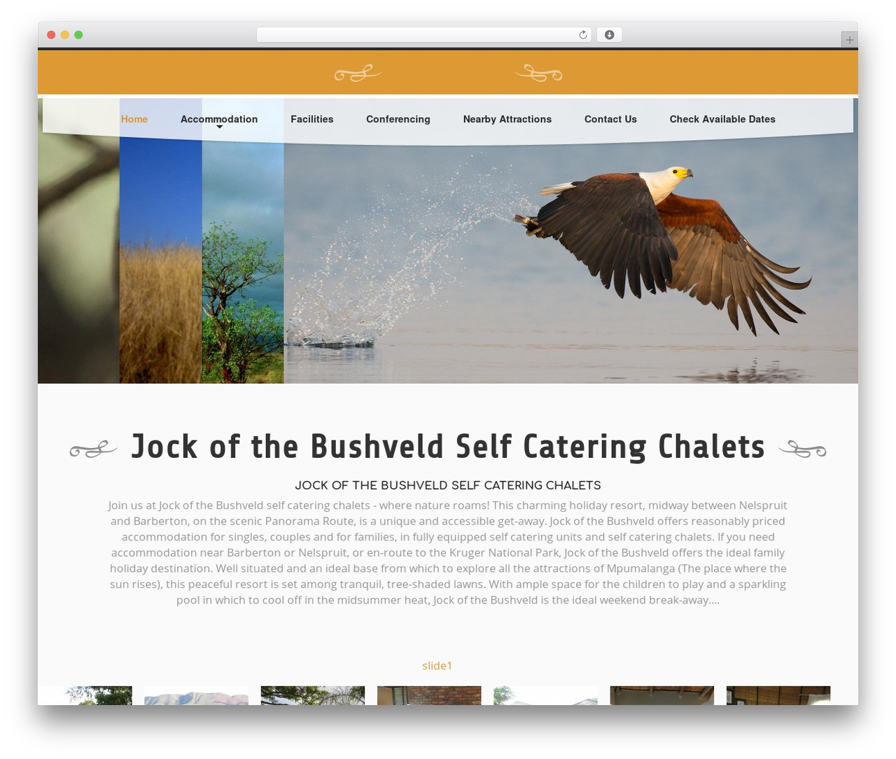 WordPress theme cherry - jockaccommodation.co.za