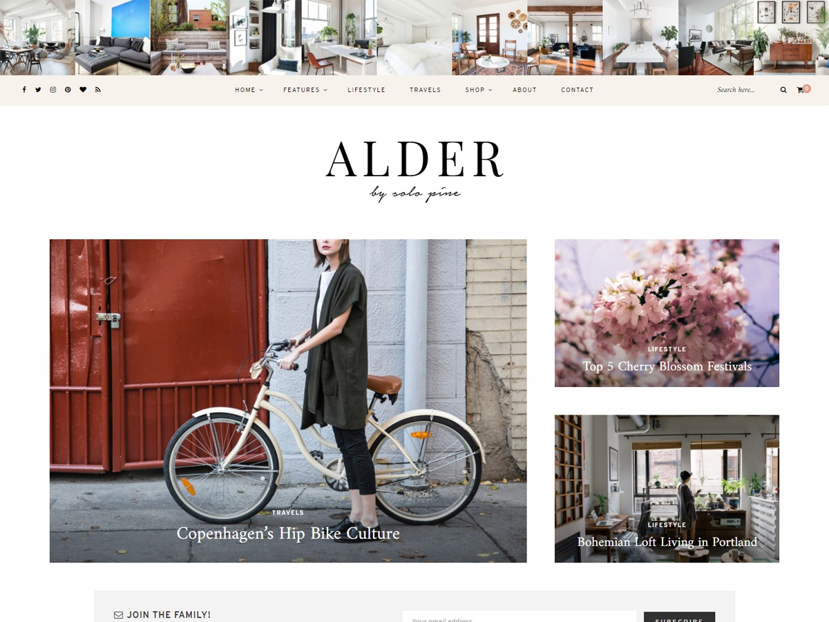 Alder WordPress blog template