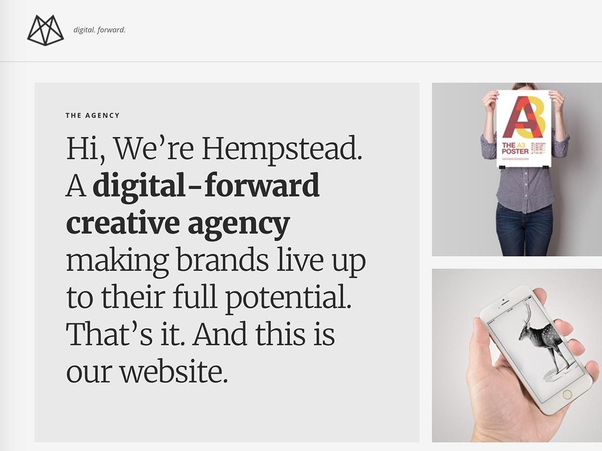 Best WordPress template Hempstead