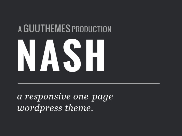 Best WordPress template Nash