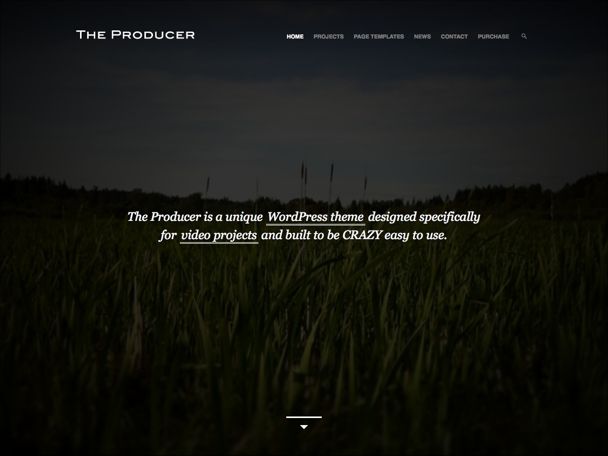 Best WordPress template The Producer