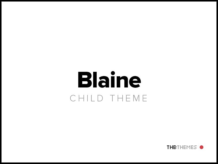 Blaine child-theme WordPress portfolio theme