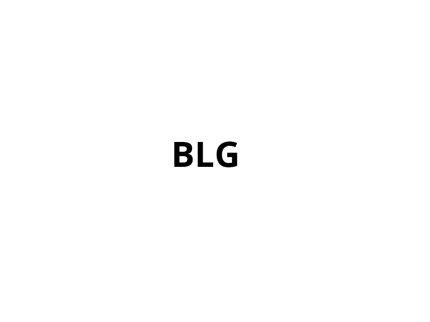 BLG WordPress theme design