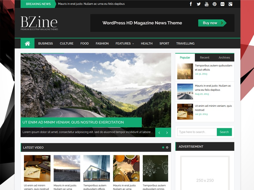 BZine theme WordPress