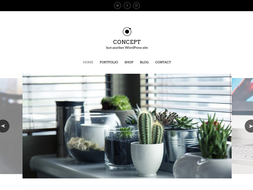 Concept Lite template WordPress free