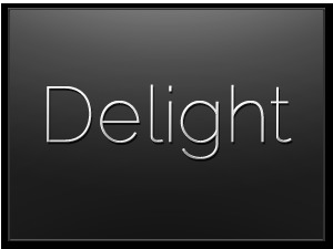 Delight WordPress website template