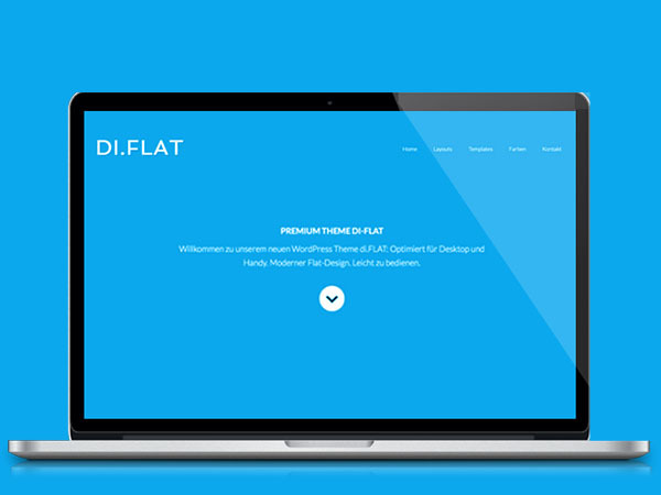DI Flat WP template