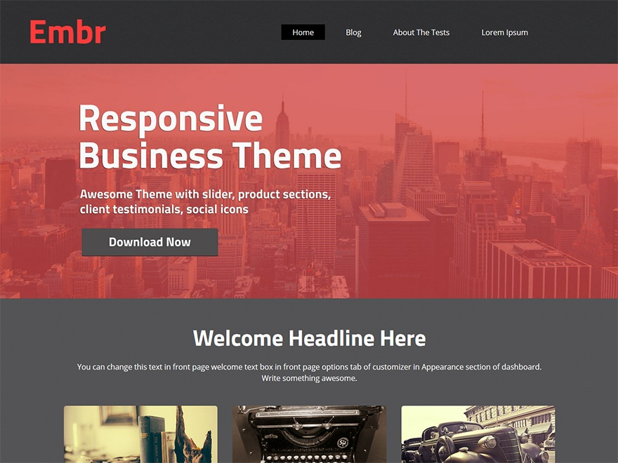 embr business WordPress theme