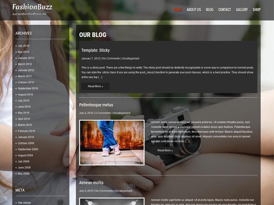 Fashionbuzz WordPress theme image
