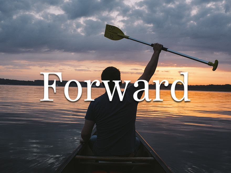 Forward best WordPress template