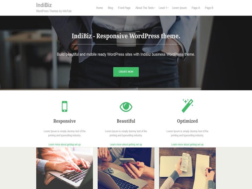 IndiBiz free WP theme