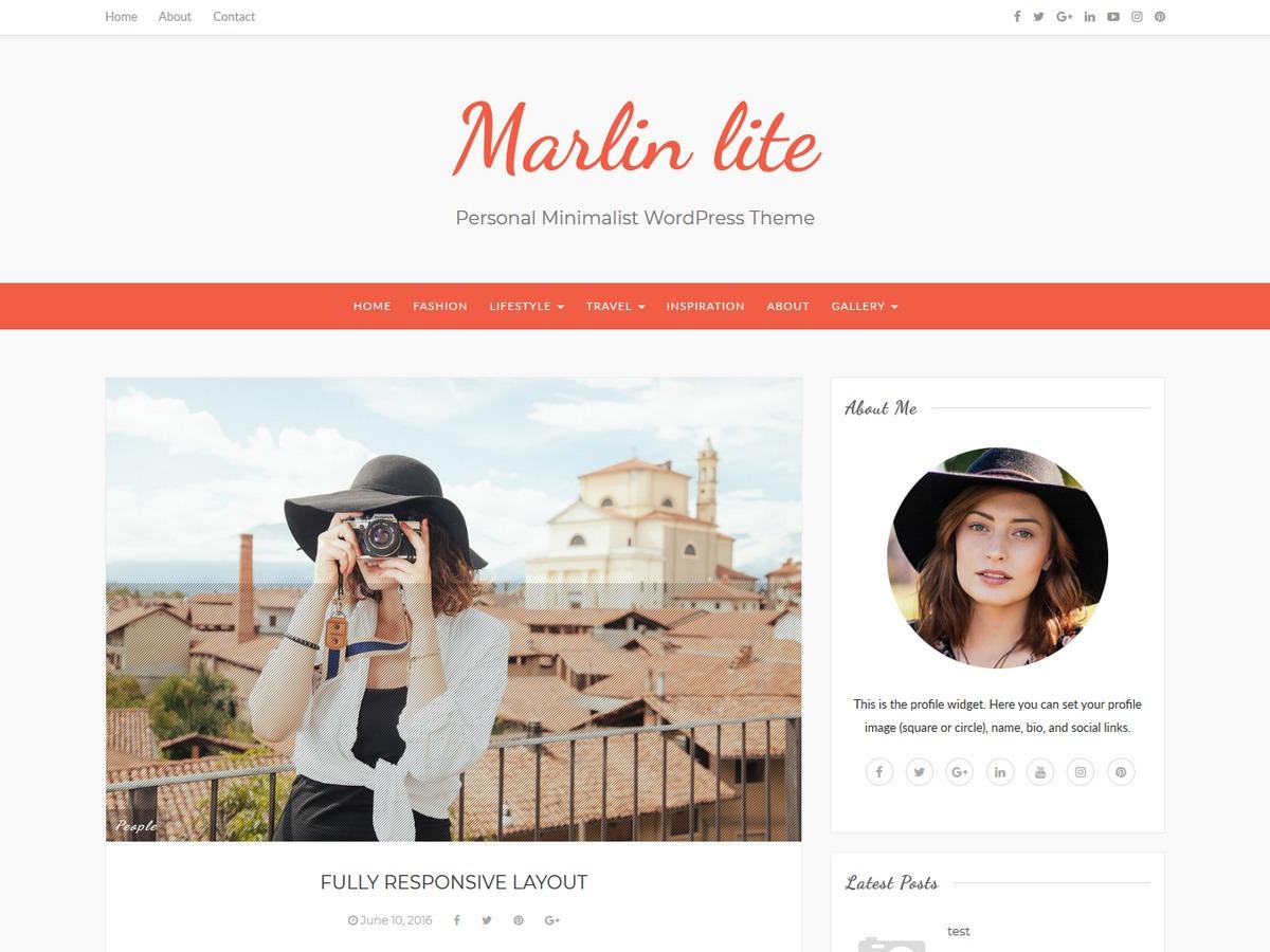 Marlin lite best free WordPress theme
