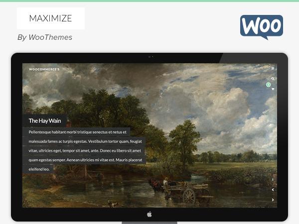 Maximize WordPress theme design
