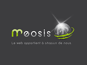 MEO Parent Theme 2 template WordPress