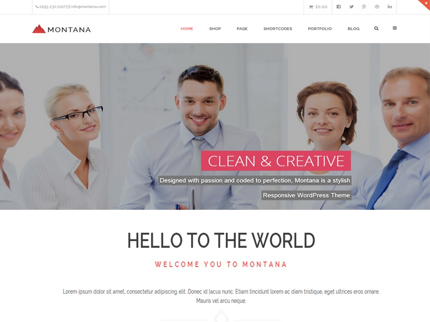 MONTANA WordPress theme