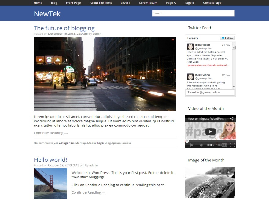 NewTek WordPress blog template