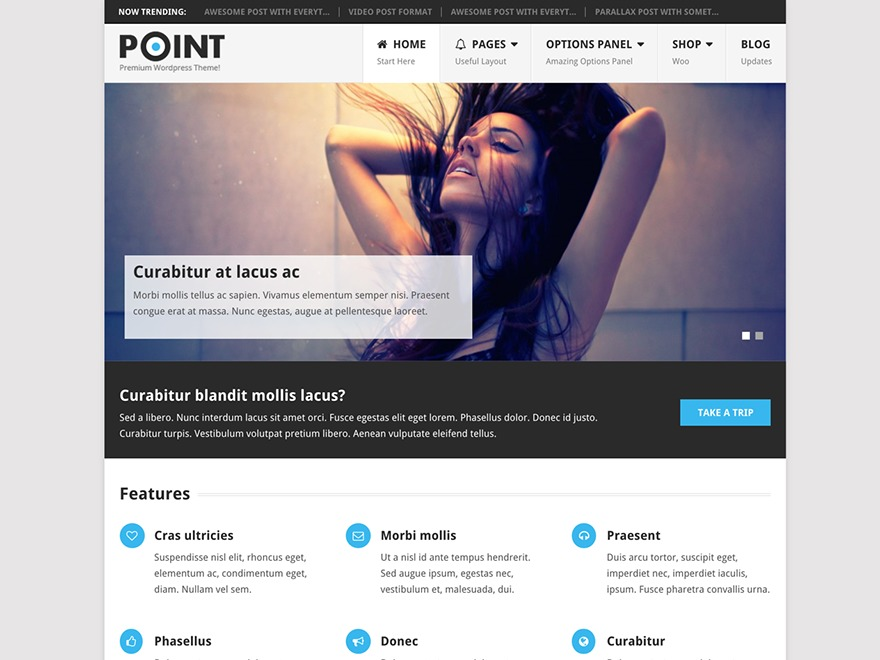 Point Pro by MyThemeShop WordPress shop theme