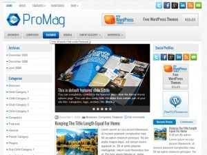 ProMag WordPress news template