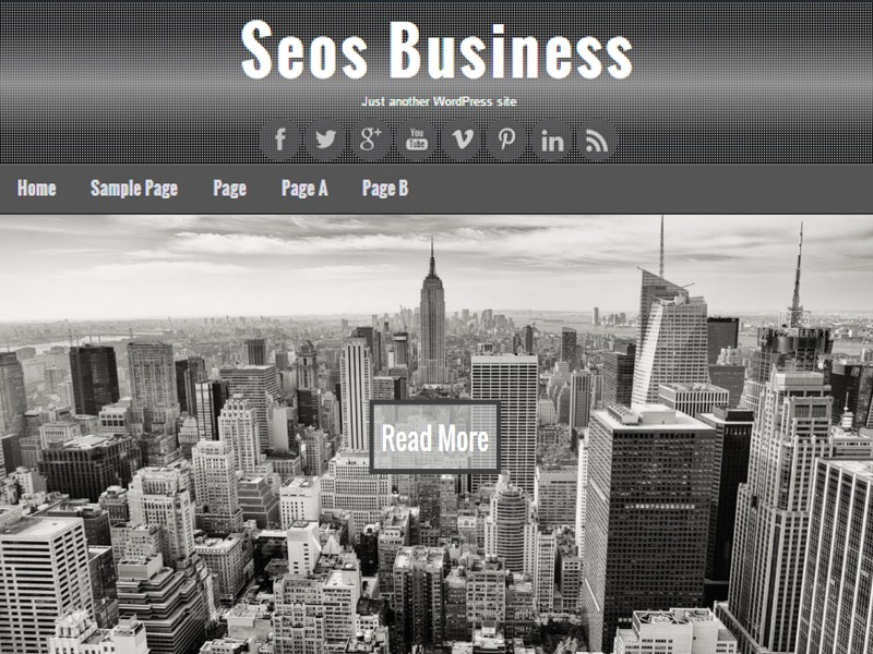 Seos Business WordPress theme download