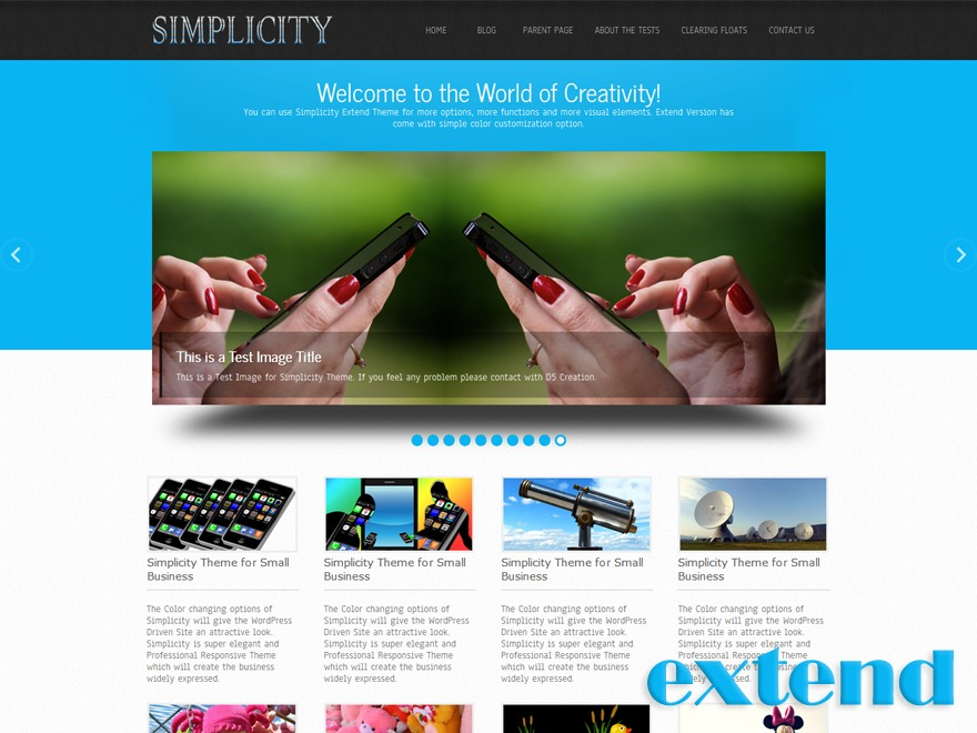 Simplicity Extend WordPress template for business