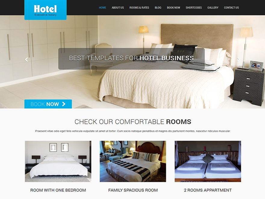 SKT Hotel Lite free WP theme