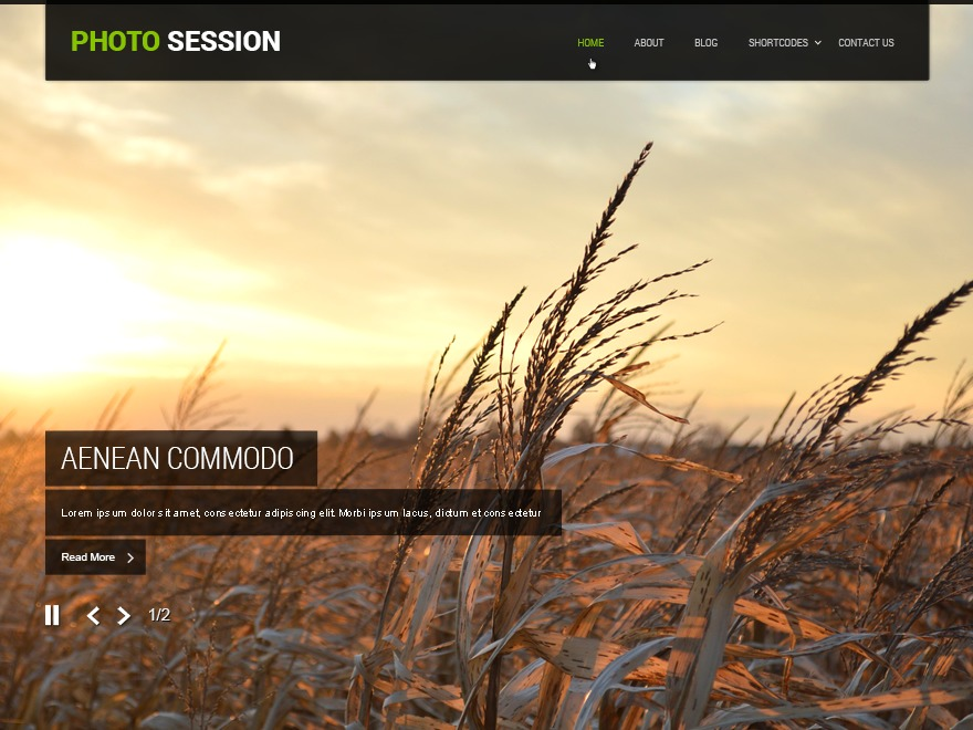 SKT Photo Session WordPress portfolio template