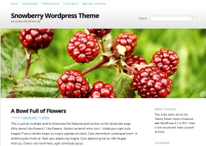 Snowberry WordPress blog theme