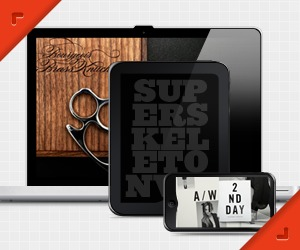 Super Skeleton premium WordPress theme