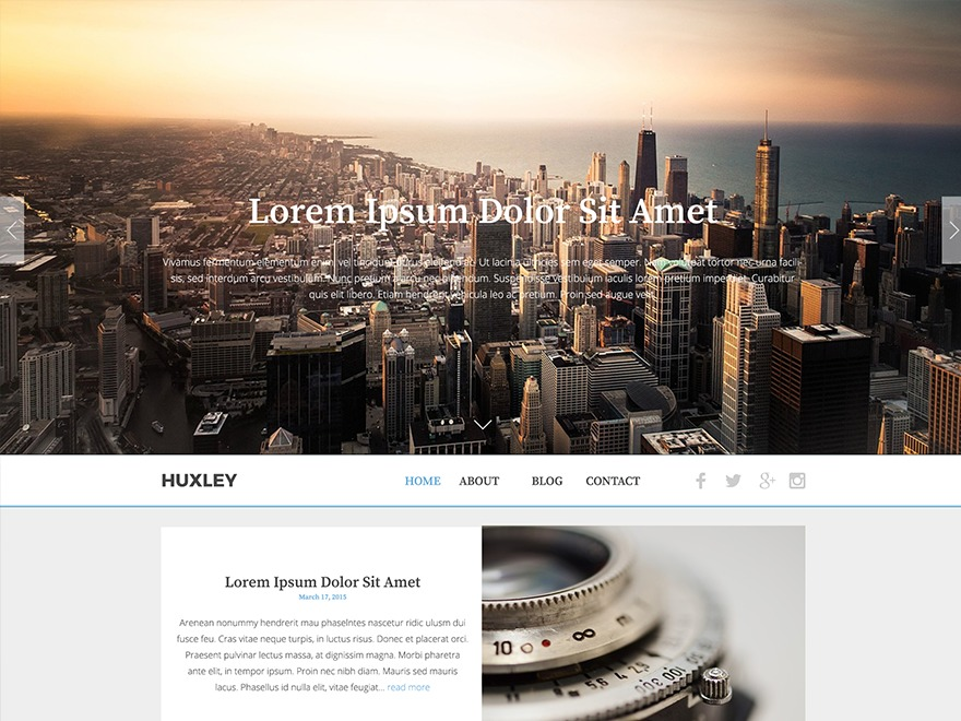 The Huxley WordPress theme download