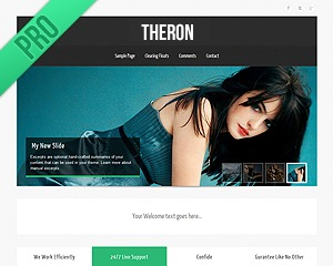 Theron PRO v2 WordPress template for business