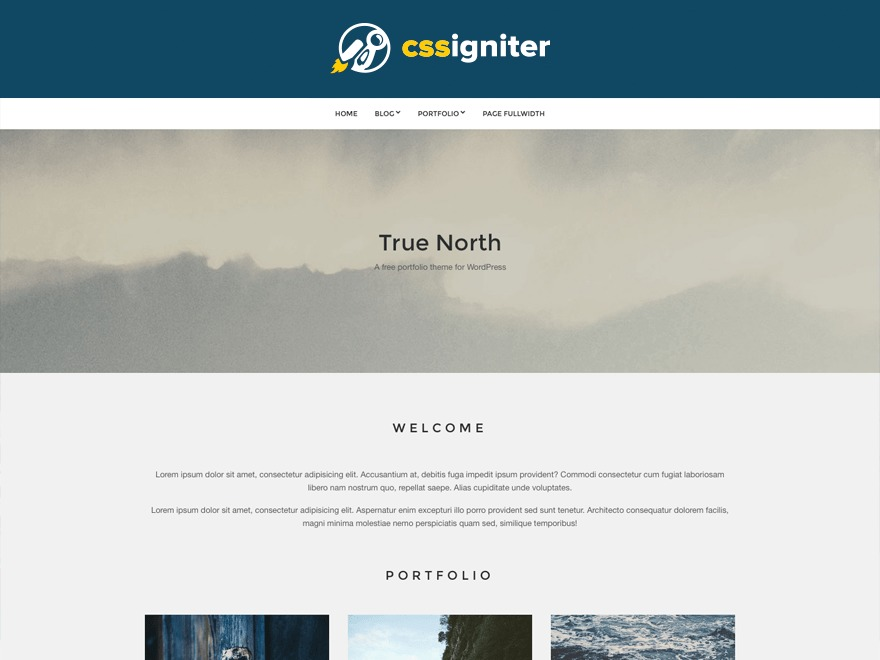 True North personal WordPress theme