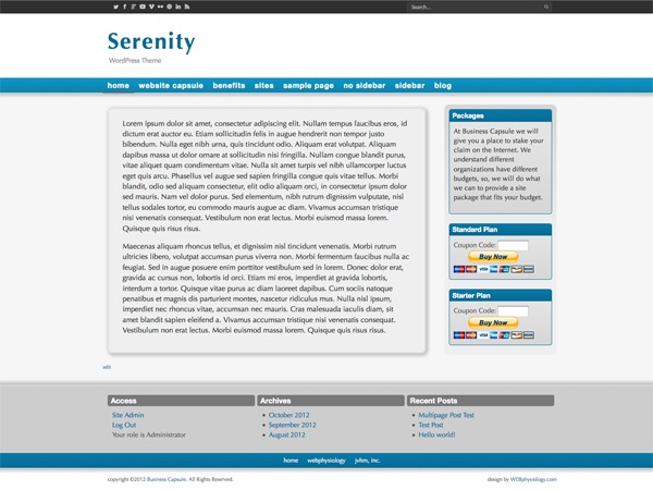 WEBphysiology Serenity WordPress template for business