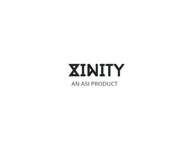 WordPress template Xinity