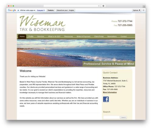 WordPress theme Customized - wisemantax.com