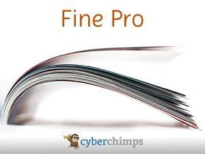 WordPress theme Fine Pro