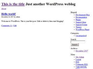 WordPress website template Naked