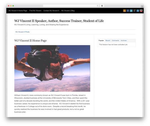 WP-Professional top WordPress theme - wjv2.com