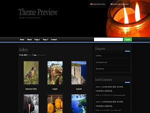 zindi-II WordPress theme
