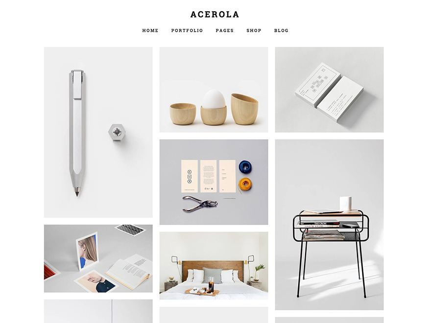 Acerola best portfolio WordPress theme