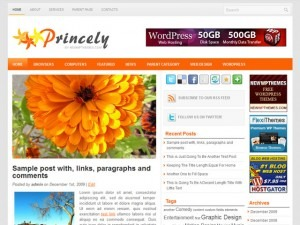Princely WordPress magazine theme