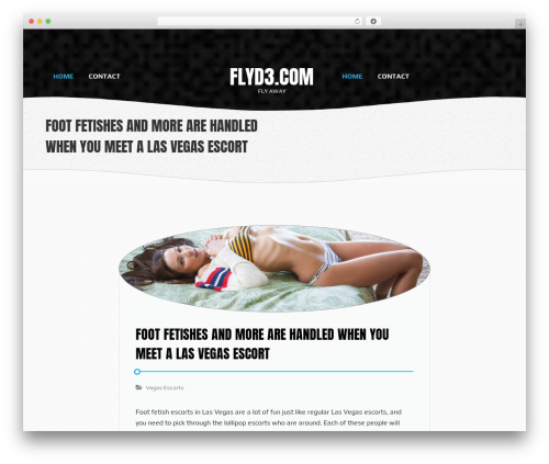 Waves best free WordPress theme - flyd3.com
