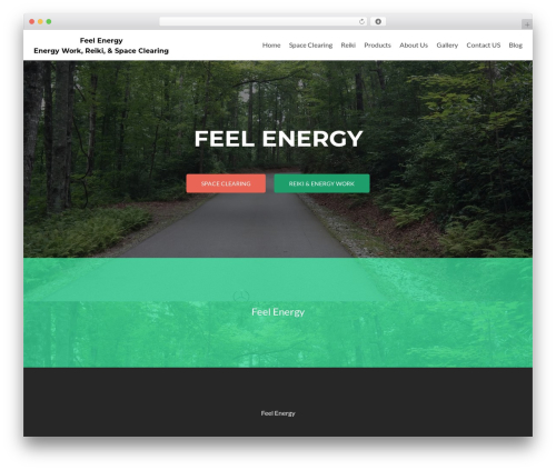 Free WordPress Contact Form & SMTP Plugin for WordPress by PirateForms plugin - feelenergy.org