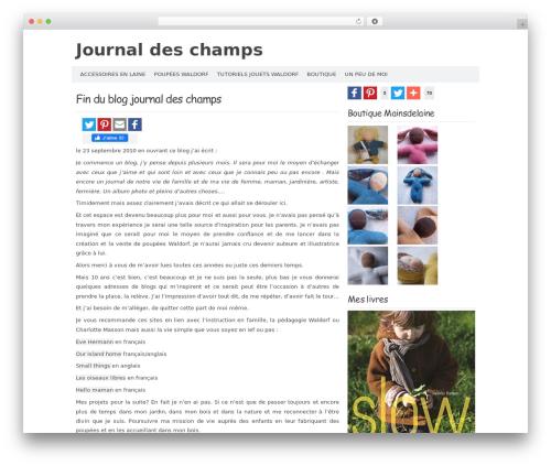 Codium Extend theme free download - journaldeschamps.fr