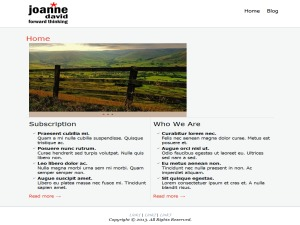 WordPress theme joanne